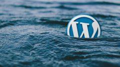WordPress Eklentileri: Olmazsa Olmazlar