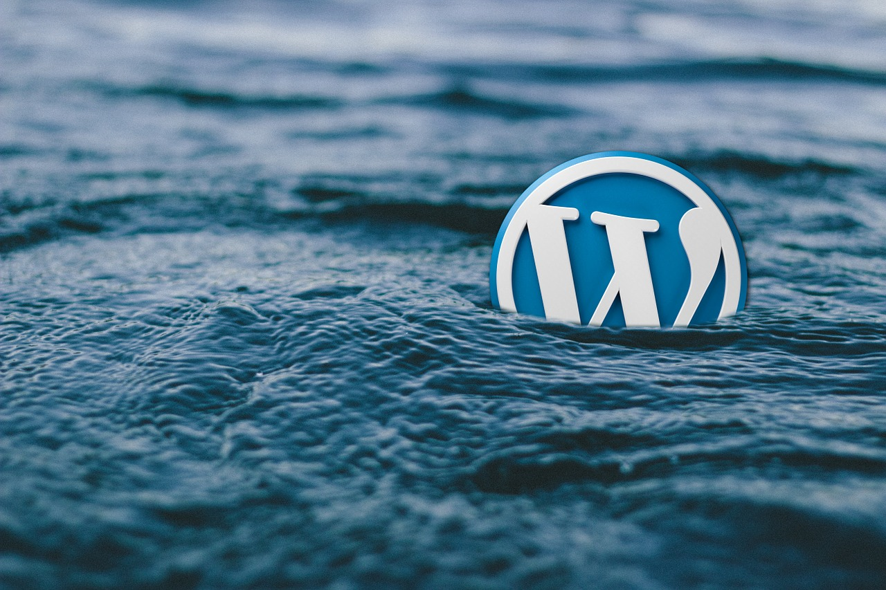 wordpress eklentileri